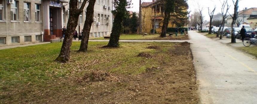 Započelo uređenje zelenih površina